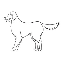 Cute contour golden retriever isolated on white vector