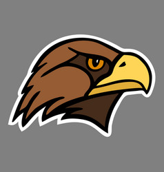 Eagle the head of a bird of prey vector