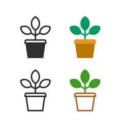 flower plant in a pot vector image