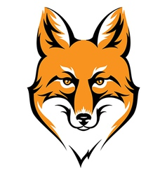 fox color vector image