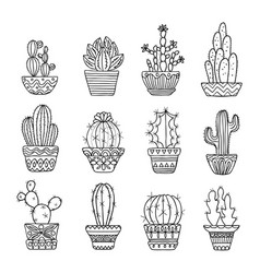 Hand drawn sketch cactus set vector