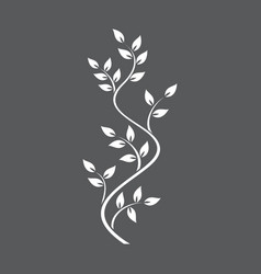 Natural ornamentation with ivy on dark background vector