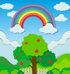 Rainbow over the apple tree vector
