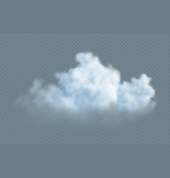 realistic white fluffy cloud isolated vector image