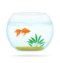aquarium with fish 02 vector image vector image