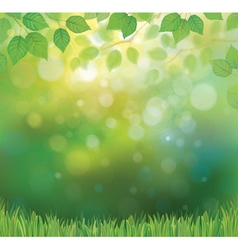 background spring vector image vector image