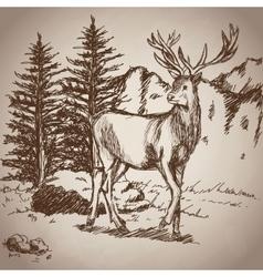 deer hand drawing landscape vintage vector image