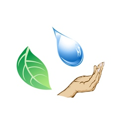 cycle of water-drop hand and leaf vector image vector image