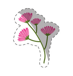 pink branch flowers decoration cut line vector image vector image