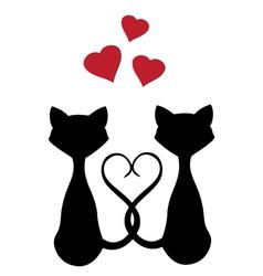 cats hearts vector image