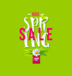 Big spring sale label vector