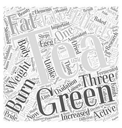 Green Tea Can Loosen Weight Word Cloud Concept vector