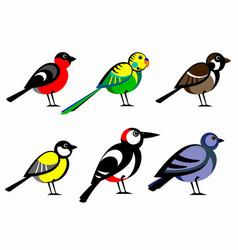 a collection cartoon birds vector image