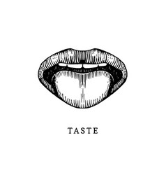 Hand drawn icon of human sense of taste in vector