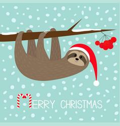 Merry christmas sloth hanging on rowan rowanberry vector