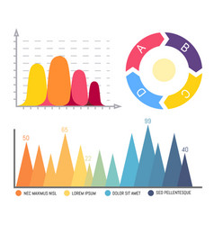 pie diagram infographics and infocharts data vector image