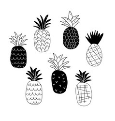Set of black and white abstract pineapples vector