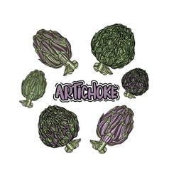 Set with artichoke vector