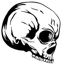 Skull2 vector