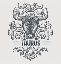 taurus zodiac vintage vector image