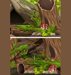 two scenes of forest with logs and fern vector image