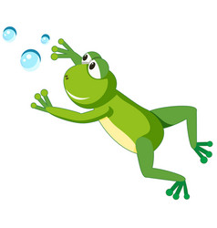 a frog character on white background vector image