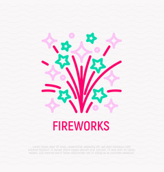 fireworks thin line icon vector image