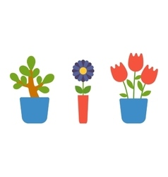 Home flower in pot vector image