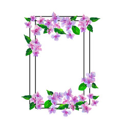 lilac flowers isolated floral design frame vector image