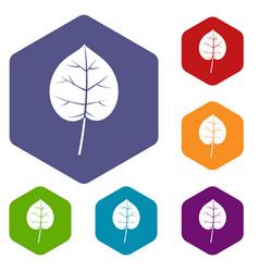 linden leaf icons set hexagon vector image