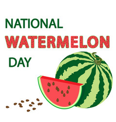 national watermelon day card vector image