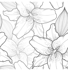 seamless black-and-white background lilies vector image