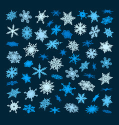 set blue snowflakes falling in different vector image