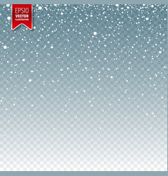 snow with snowflakes winter blue background for vector image