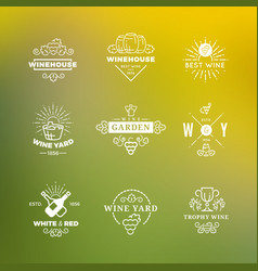 White wine labels design on green vector