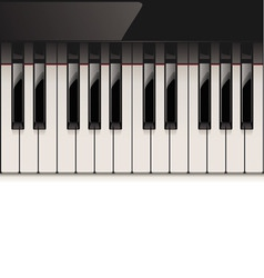 vector detailed piano keyboard vector image vector image