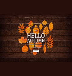 autumn sale lettering label vector image