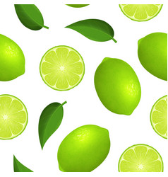 realistic detailed 3d whole green fruit lime and vector image