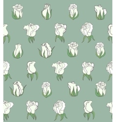seamless background with white roses vector image
