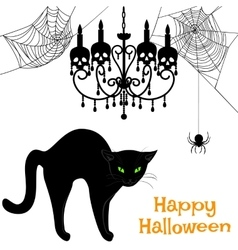 webs and black cat vector image vector image