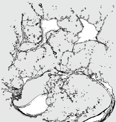 watersplashes vector image vector image