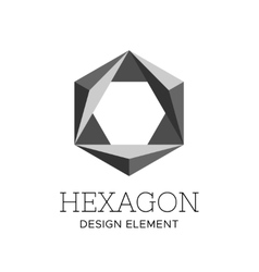 Flat gray polygonal hexagon logo template vector image