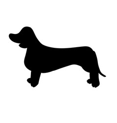 silhouette of dachshund isolated on white vector image