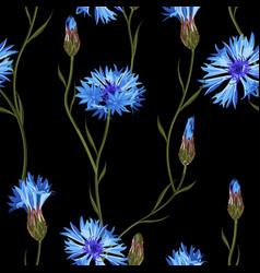 Cornflower floral seamless pattern vector