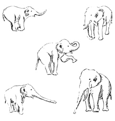 Elephants A sketch by hand Pencil drawing vector