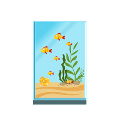 exotic fishes in tall glass aquarium with sand vector image