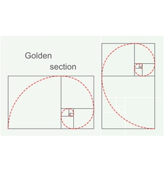 Golden section vector image