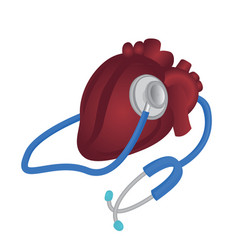 heart and stethoscope cardiovascular vector image