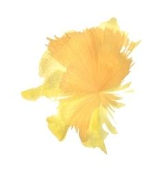 Orange spot flash like watercolor vector image