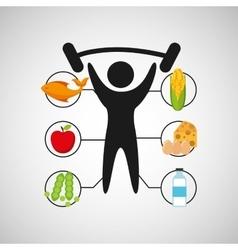 Sport man barbell lift nutrition health vector